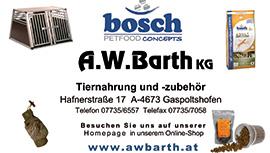 Inserat_Abarth
